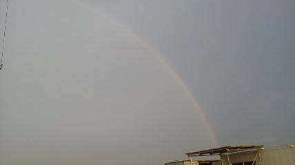 P20130806虹