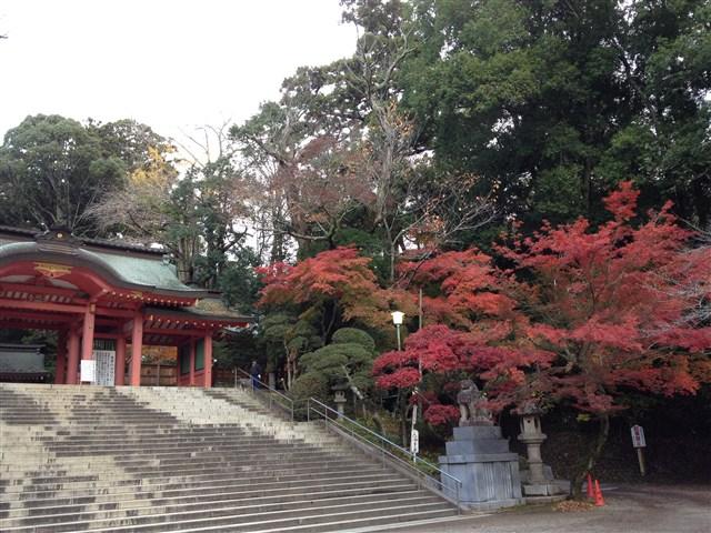 紅葉2014香取神宮11月28日%20(5)