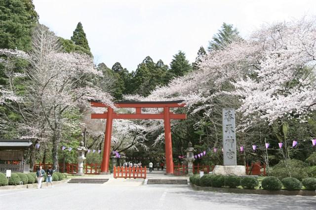 さくら祭り(香取神宮)_800