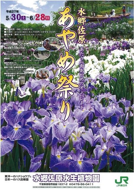 水郷佐原あやめ祭り2015チラシ